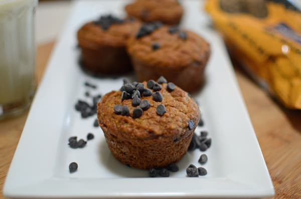 A Celebrate Fall with these popular Grain-Free, Gluten-Free Pumpkin Chocolate Chip Muffins. Rich, moist and sprinkled with chocolate chips. A little taste of heaven in each bite.