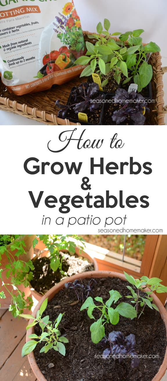 If you are short on gardening space then a container garden is your best bet. Try planting a herb garden in a container and see how easy it is.