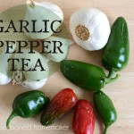 Garlic Pepper Tea: A Natural and Organic Pesticide