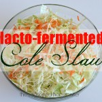 Lacto-Fermented Cole Slaw