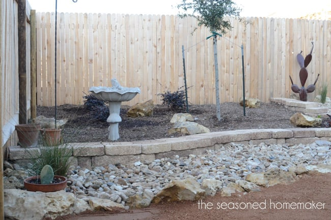 Small Yard Landscapes can be challenging. Most people never begin a new landscape because they don't know where to start. This post shows the evolution of our xeriscape Small Yard Landscape. Gardening Beginners this will teach you How to Landscape.