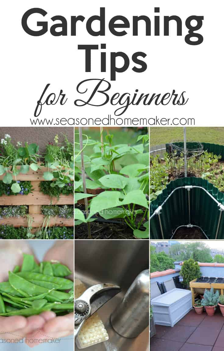 Are you a Beginning Gardener? It's time to start planning your spring garden and I have a few Gardening Tips for Beginners that will help you get you on the right path. Your first vegetable garden is sure to be a success!