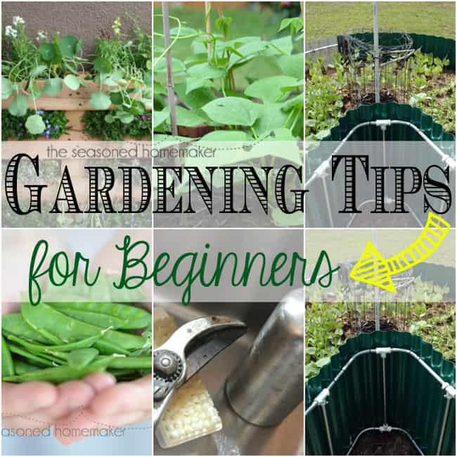 Gardening tips the seasoned homemaker for Gardening tips