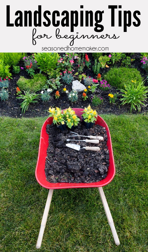 Most people never attempt a new garden landscape because they don't know where to start. In this popular pin I have 8 Gardening Landscape Tips for Beginners that will teach you How to Landscape.