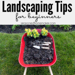 How to Landscape