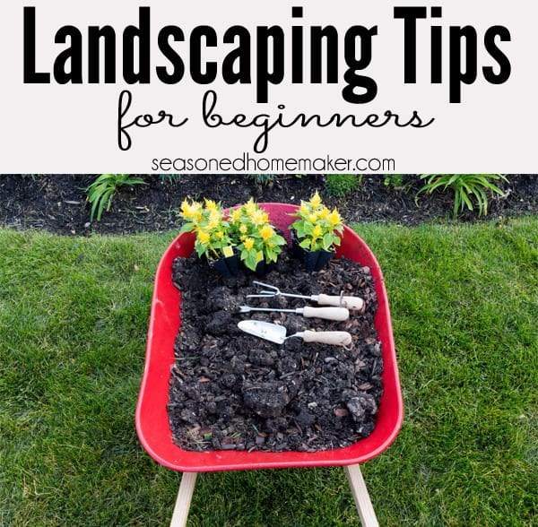 how to landscape the seasoned homemaker