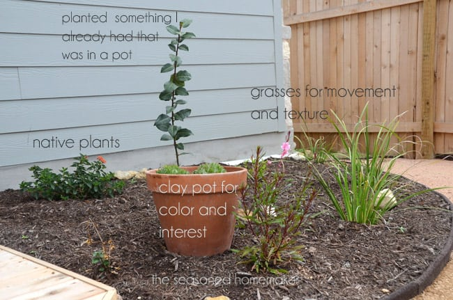 How To Start A Small Garden In Your Backyard Backyard Design