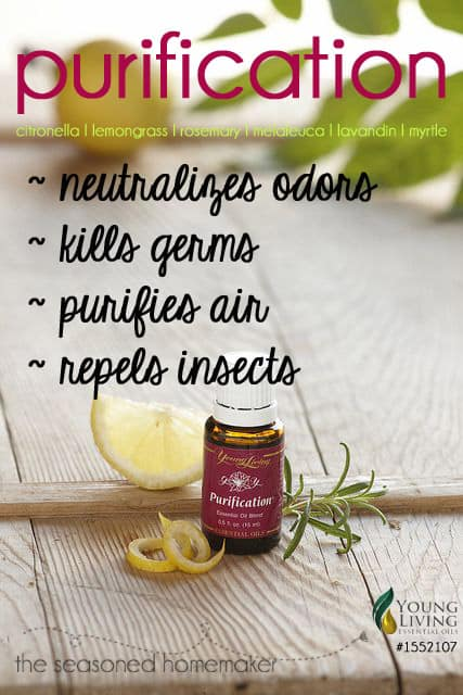 YLEO Purification Blend