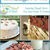Linky Party - Come early and be our featured blogger