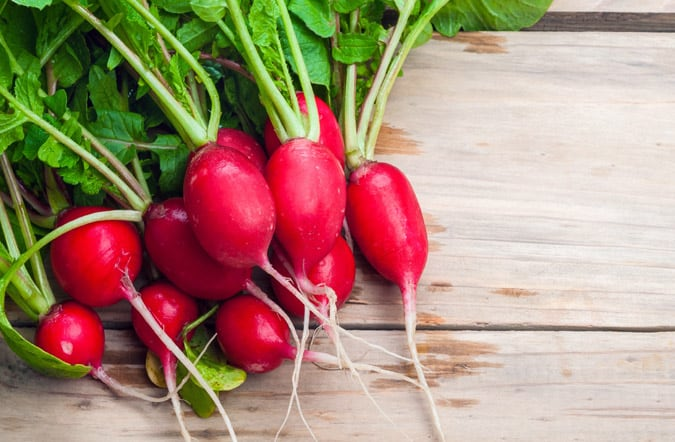 Thinking about planting a vegetable garden this year? I know a few Easy Vegetables for Beginning Gardeners. These garden vegetables are ideal for beginners.