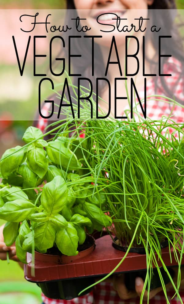 The Seasoned HomemakerHow To Start A Vegetable Garden