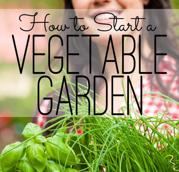 The Seasoned HomemakerHow to Start a Vegetable Garden