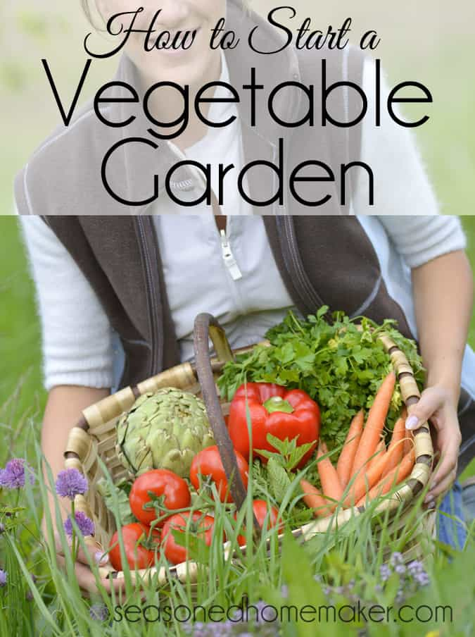 How to Start a Vegetable Garden: Nothing is more DIY than a vegetable garden. The first thing you need to know is anyone can have a green thumb. It's really all about paying attention to the plants in the garden. Follow these simple steps to start a vegetable garden. garden | gardening | vegetable garden #seasonedhome