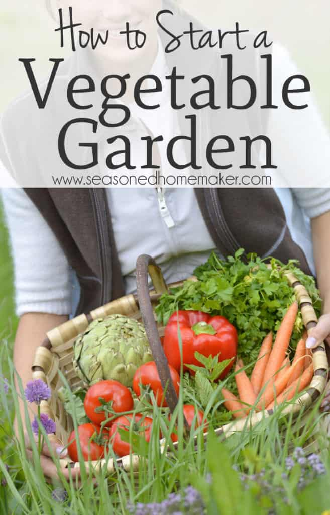 Nothing is more DIY than a vegetable garden. The first thing you need to know is anyone can have a green thumb. It's really all about paying attention to the plants in the garden. Follow these simple steps to start your very own vegetable garden.