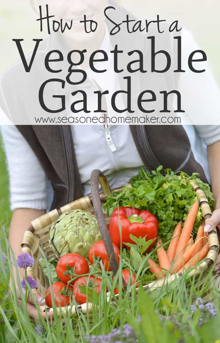 how to start a vegetable garden pictures to pin on pinterest