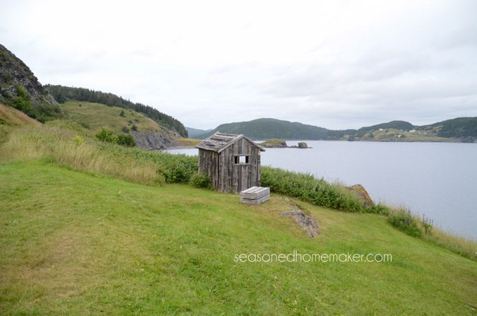 Newfoundland is one of the most magical places on earth. It's rich in history, full of natural wonders, and has unbelievable coastlines. Where else can you see whales in the wild, icebergs, and puffins all in one day. Colorful communities, quaint ports, and a unique landscape await.