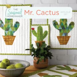 Mr. Cactus Applique Set