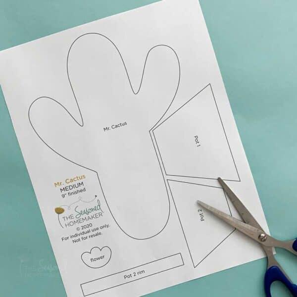 Mr. Cactus Applique Set