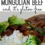 Gluten Free Mongolian Beef