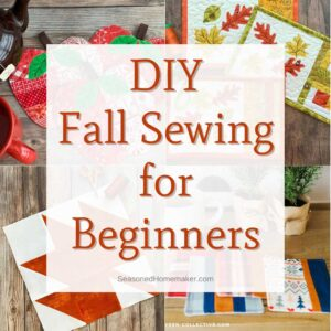 Fall Sewing for Beginners - Cover